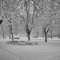 Когда  бывает в городе зима...