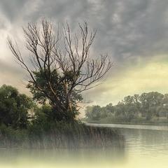 Чудо Остров