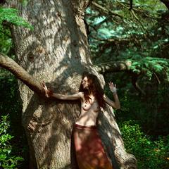 там  где  слышно как  растут деревья