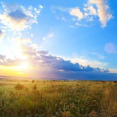 Донбасская степь