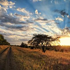 Там, где бывает закат, - вскоре наступает рассвет
