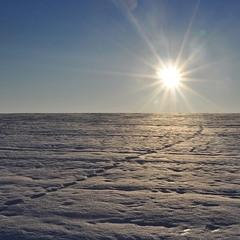 По снегу, упавшему с неба...