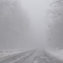 пролетіти крізь туман