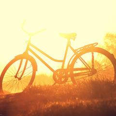 «Велоет»