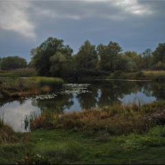 Біля озера.