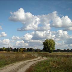 Шлях до дому.