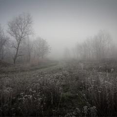 Осінні тумани.