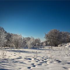 Зимові хроніки 3.