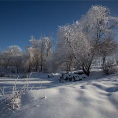 Зимова пргулянка.