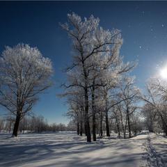 Зимові хроніки 2.
