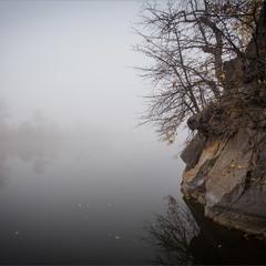 Туман на скелястому.