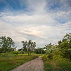 Дорога до дому.