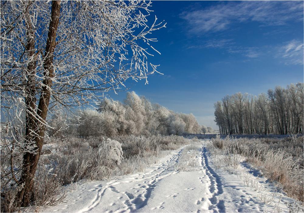 Фотография пейзаж зимушка