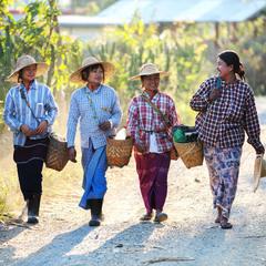 Дорога домой (Мьянма)