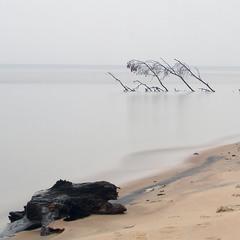 Забытые берега...