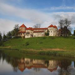 Свіржський замок
