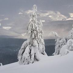 Вигляд з Чорногори...