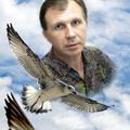 Владимир Билюк